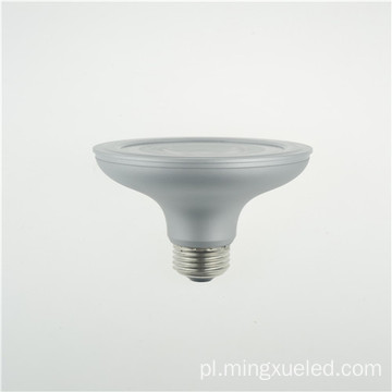 Par30 Commercial Outdoor Spotlight 110V 10W